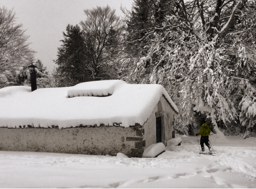 Trekking con Raquetas de nieve [28 Enero]